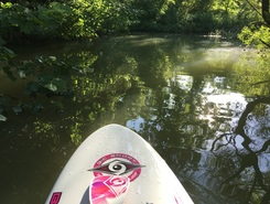 School Lane, Blue Marsh spot de stand up paddle en États-Unis