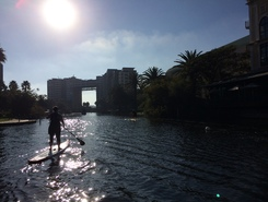 Intaka, Cape Town spot de stand up paddle en Afrique du Sud