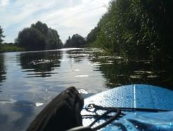 Aller (Wehr bei Langlingen)  paddle board spot in Germany