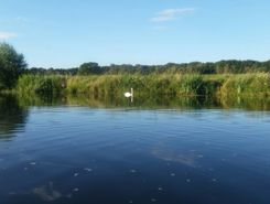 Aller (Wehr bei Offensen) sitio de stand up paddle / paddle surf en Alemania