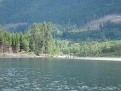 salmon river spot de stand up paddle en Canada