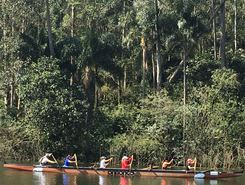 Represa Guarapiranga paddle board spot in Brazil