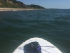 Downwind paddle board spot in United States