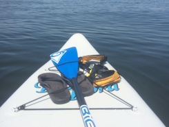 Creek to Bayville paddle board spot in United States