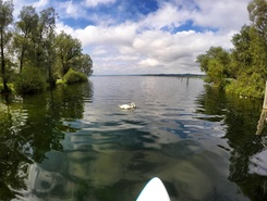 Starnberger See sitio de stand up paddle / paddle surf en Alemania
