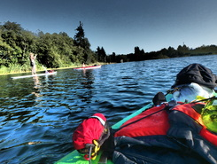 campbell river estuary spot de stand up paddle en Canada