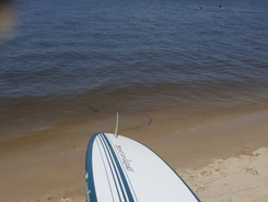 Roaring Point beach spot de SUP em Estados Unidos