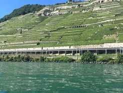 Dezaley paddle board spot in Switzerland