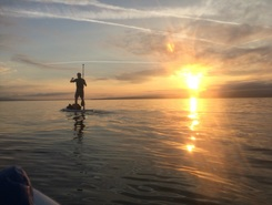 Becassine paddle board spot in Switzerland