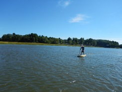 Squamscott River - Great Bay paddle board spot in United States