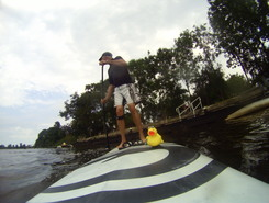 Zoutkamp spot de stand up paddle en Pays-Bas