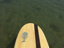 Quonnie pond spot de stand up paddle en États-Unis