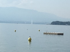 Mies paddle board spot in Switzerland