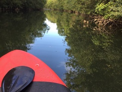 Canal de Rompsay spot de stand up paddle en France