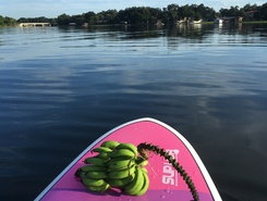 Lake Conway paddle board spot in United States