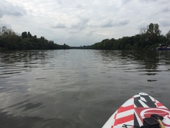 Main paddle board spot in Germany