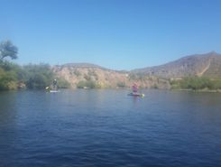 Salt River sitio de stand up paddle / paddle surf en Estados Unidos