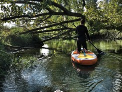 sup in de biesbosch  spot de stand up paddle en Pays-Bas