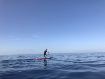 Palm Mar sitio de stand up paddle / paddle surf en España