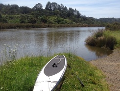Paddle boarding  paddle board spot in New Zealand