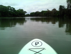 Rio Paraguai (MT) paddle board spot in Brazil