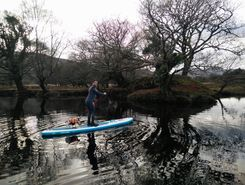 brandons cottage paddle board spot in Ireland
