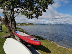 frim kulim park to fergusonpark paddle board spot in New Zealand