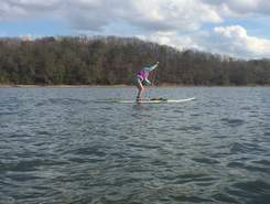 Tennessee River, above Chickamauga Dam paddle board spot in United States