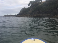 Blue Bach 5  paddle board spot in New Zealand