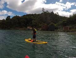 Careys Bay paddle board spot in New Zealand