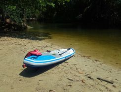 Sabalo Eco Lodge and Mangroves paddle board spot in Costa Rica