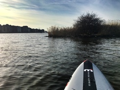 Ertshaven paddle board spot in Netherlands