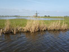 oosthuizen molen de breek paddle board spot in Netherlands