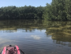 Weedon paddle board spot in United States