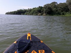 lake victoria sitio de stand up paddle / paddle surf en Uganda