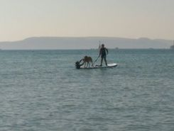 jennycliff paddle board spot in United Kingdom