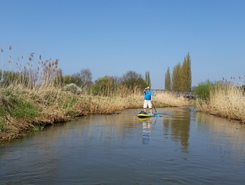 Fuhse (Burgzentrum) sitio de stand up paddle / paddle surf en Alemania