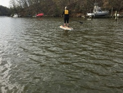 South river paddle board spot in United States