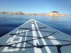 Lake Mead Marina spot de stand up paddle en États-Unis
