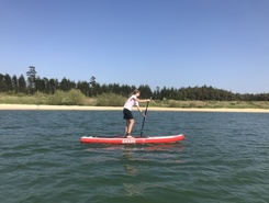Nysø paddle board spot in Denmark