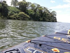 nile river paddle board spot in Uganda
