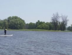 blair road to petrie island paddle board spot in Canada