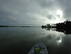Christchurch Estuary paddle board spot in New Zealand