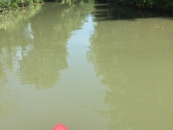 Basingstoke Canal sitio de stand up paddle / paddle surf en Reino Unido