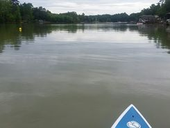 Tega Cay Beach & Swim Club paddle board spot in United States