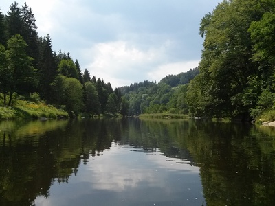 Schwarzen Regen: Teisnach - Viechtach paddle board spot in Germany