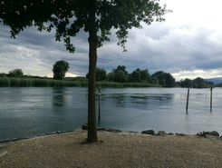 Aare paddle board spot in Switzerland