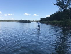 Sugar island  paddle board spot in United States