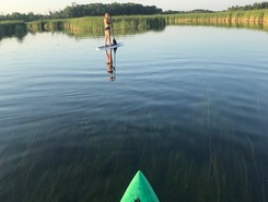 Long Prairie River paddle board spot in United States