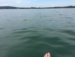 Starnberg Percha paddle board spot in Germany